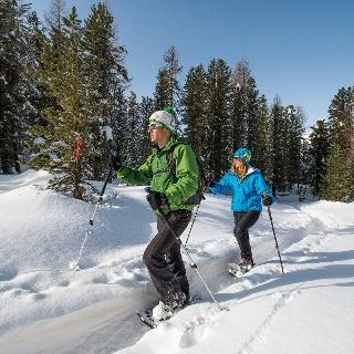 Schneeschuh-Trail Plauns