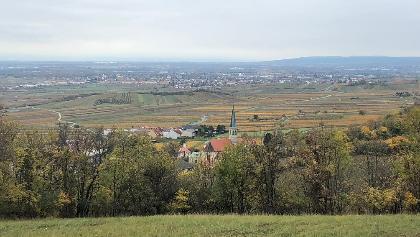 Herbstlicher Blick auf Gumpoldskirchen