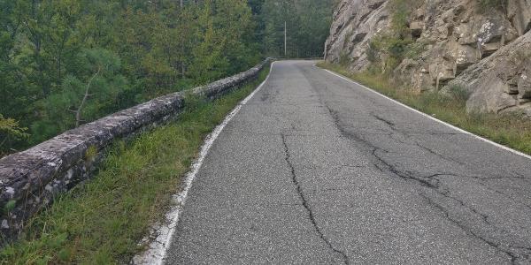 Provinzstraße auf den Passo della Calla