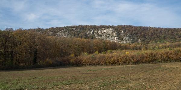 A Pes-kő