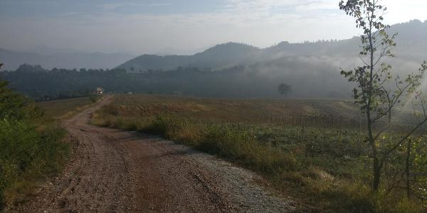 Morgen in den Hügeln um den Monte del Casale