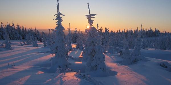 Winter in Altenberg