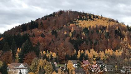 Blick von Bad Herrenalb-2000 auf den Berg gegenüber