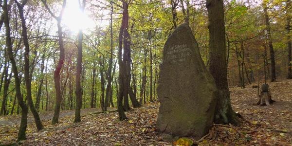 Gedenkstein Christian Roese, dem Schöpfer dieses Bergwaldes