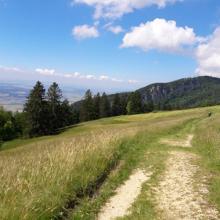 Zum Wallfahrtsort Maria Weienstein Mountainbike