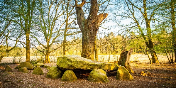 Großsteingräber in Visbek