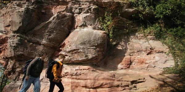 Felsenlandschaft Wasgau-Felsenweg