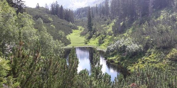 Schwarzsee Silbertal