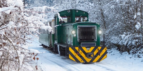 Train in the winter