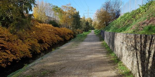 Weg zum Rheinportal