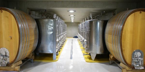 Weinkeller des Weingutes Vincenz Richter