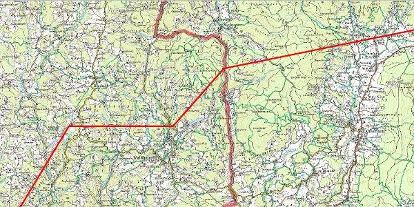 03 Waldhausen