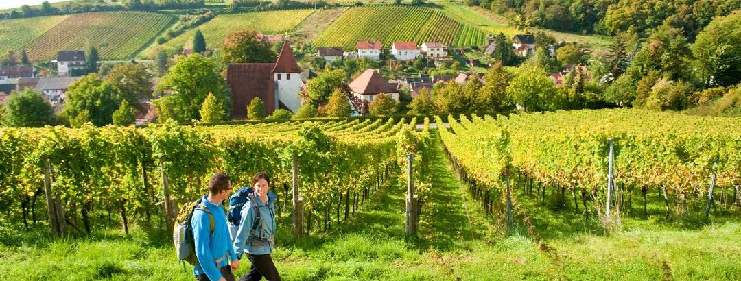 Wanderer bei Leinsweiler