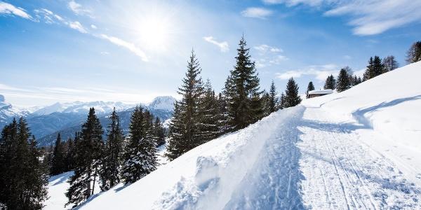 Schlittel- und Winterwanderweg Dros - Schlittelbar - Lohn/Mathon