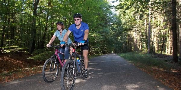 Die Tour führt auch durch den idyllischen Bienwald