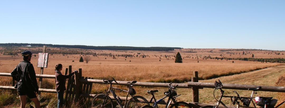 Fahrradfahren im hohen Venn