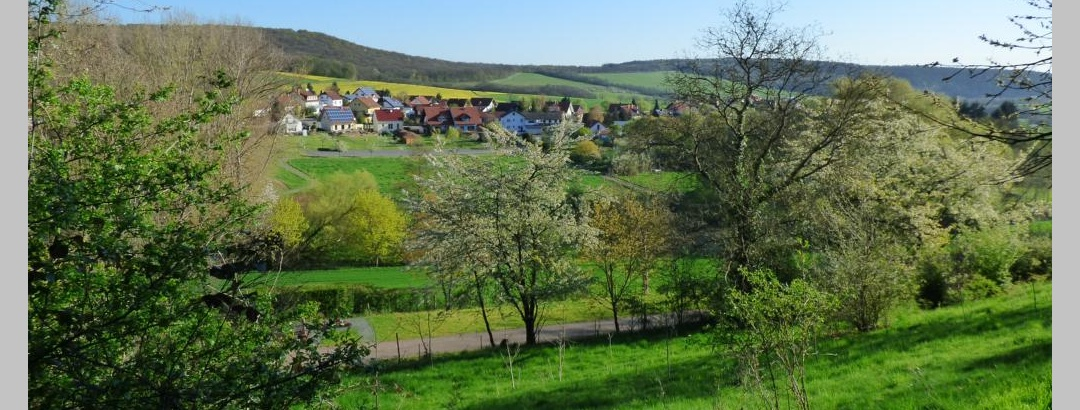 Blick zur Steinäckersiedlung