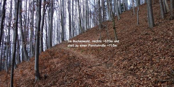 Steilstufe ca. 670 - 715m