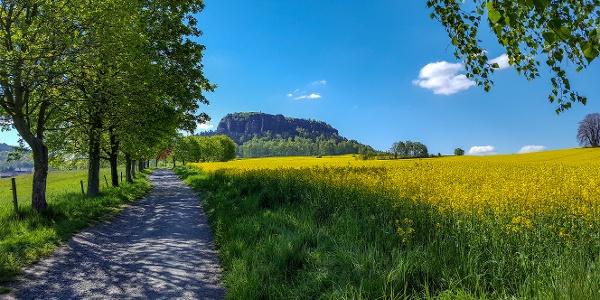 Auf dem Weg zum Pfaffenstein