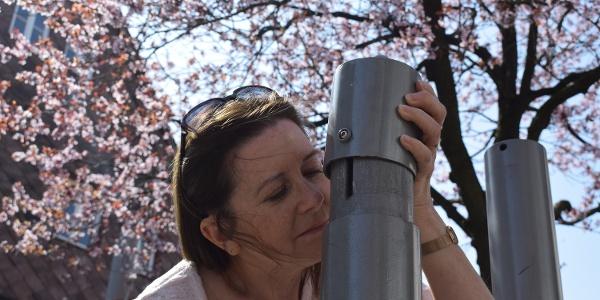 Duftstele auf dem duftenden Stadtrundgang