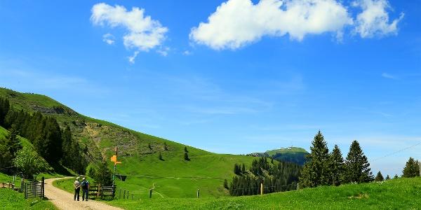 Rigi-Panoramaweg.