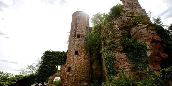 Burgruine Neudahn im Dahner Felsenland