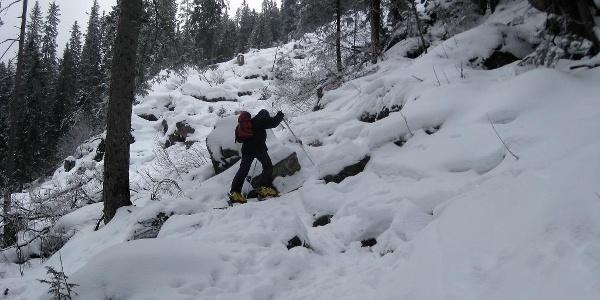 enger steiler Waldaufstieg