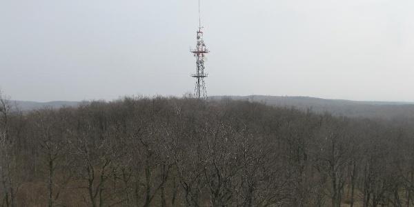 Sender im Leithagebirge nahe des Sonnenberges