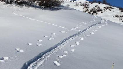 Schneeschuhwanderung Bischolpass