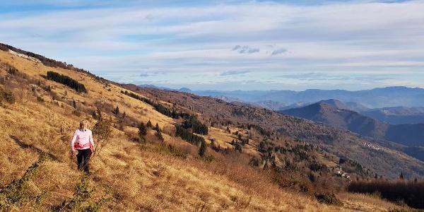 Über der Waldgrenze, unten die venetischen Dörfer