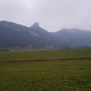 Blick auf den Falkenstein vom Startpunkt