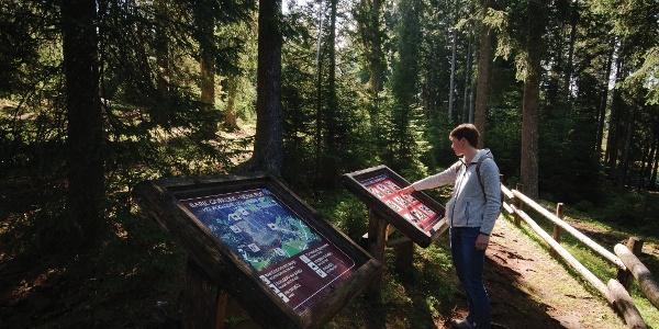 Information board at Pokljuka bogs
