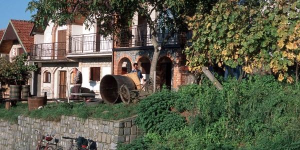 Vinné sklepy Šidleny - Milotice