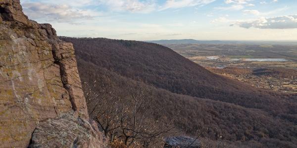 A háttérben a Villányi-hegység (Zsongor-kő)