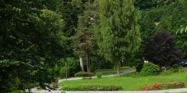 Kurpark in Sasbachwalden