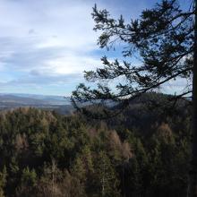Blick vom Wauberg