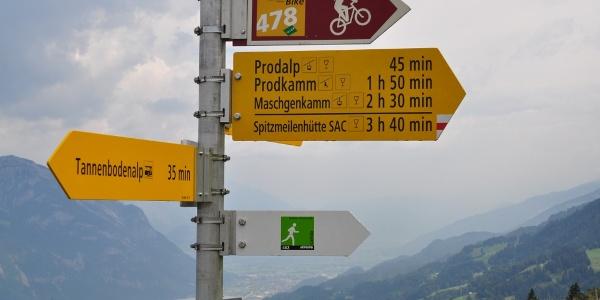 Blick von Cafrida in Richtung Churer Rheintal