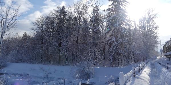 Winterwanderweg am Auerbach an der Bahnbrücke