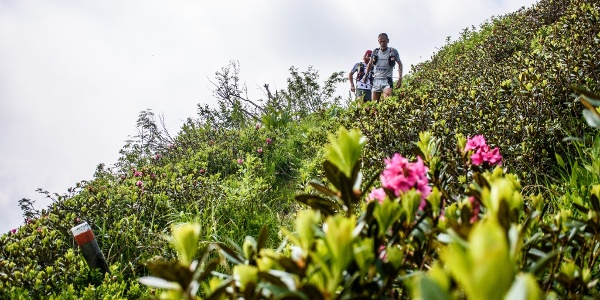 Comano Trail, correre in montagna