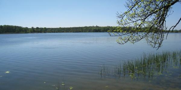 Přírodní rezervace Lednické rybníky