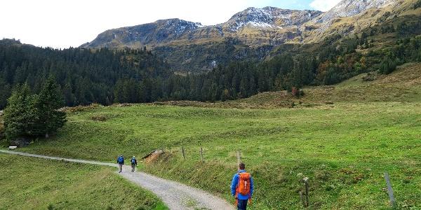 Wanderweg kurz nach der Grütschalp.