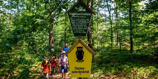 Wanderweg am Kugelpechstein