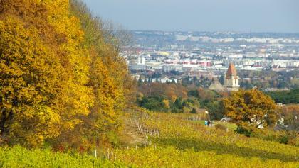 Blick auf Perchtoldsdorf im Herbst