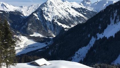 Brendleralpe von der Aufsteigsspur oberhalb