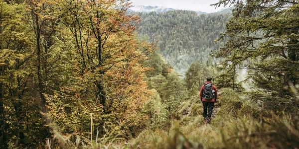 Luchs Trail 02-1
