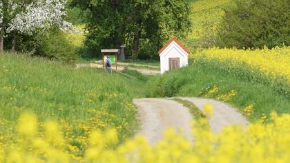 Der Weg von der Grund- und Mittelschule zur Bruder Konrad Kapelle