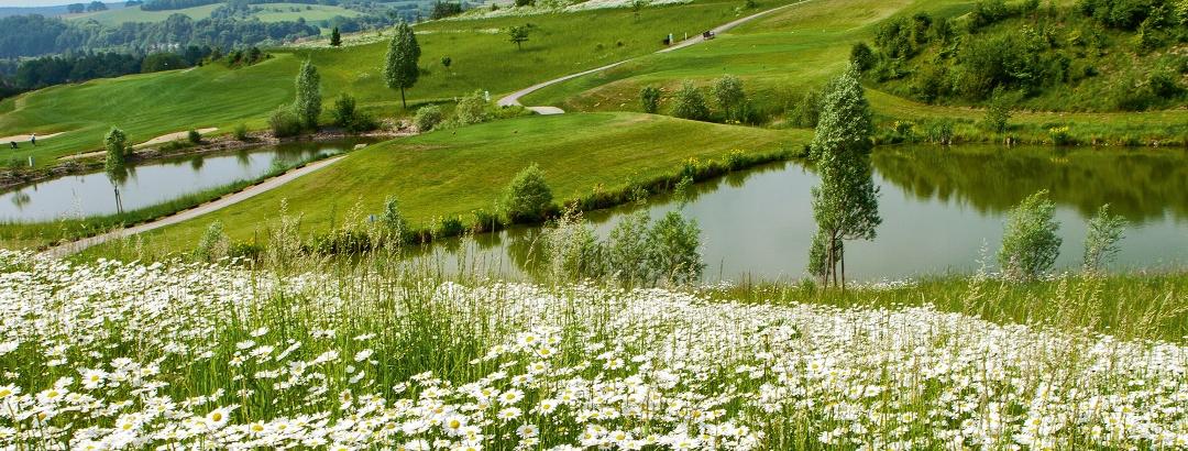 Blick auf den Bella Vista Golfpark