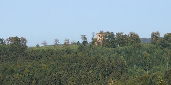 Blick von der Ottoshöhe  auf den Turm der Diedrichsburg.