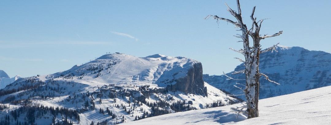 bezaubernde Winterlandschaft