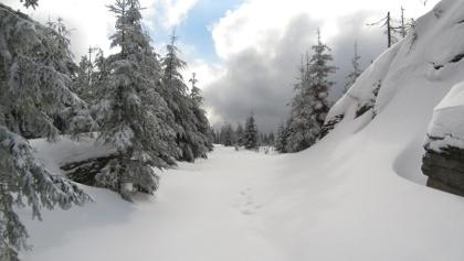 Am Tischberg - 1063 m